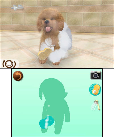 N3DS_Nintendogs+cats_poodle_01